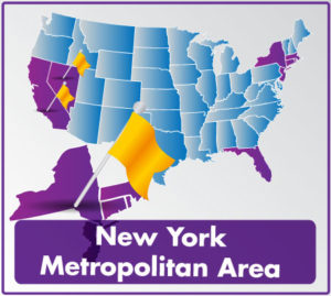 New York Metropolitan Area by concha solutoins