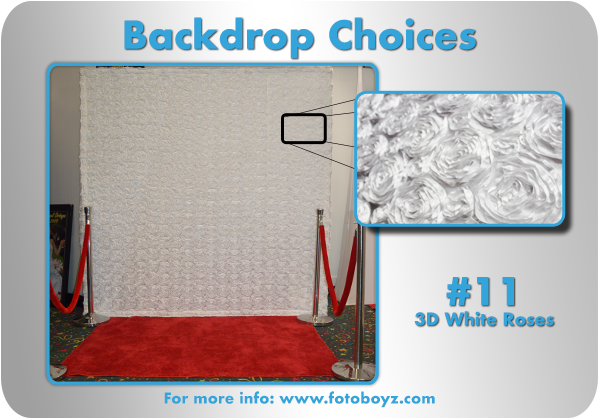 by concha Backdrop Choices11b