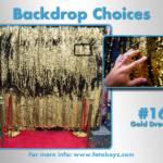 by concha Backdrop Choices16b