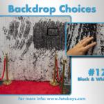 by concha Backdrop Choices17b