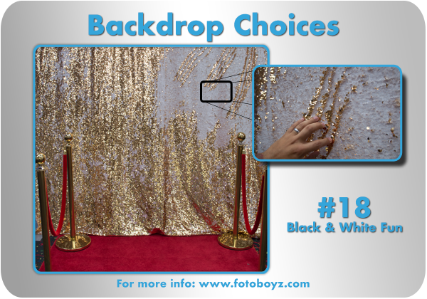 by concha Backdrop Choices18b
