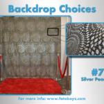 by concha Backdrop Choices7b