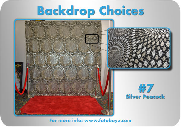 by concha Backdrop Choices7b